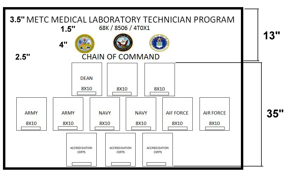 METC MEDICAL LABORATORY TECHNICIAN PROGRAM